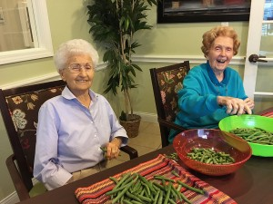 snapping green beans in Denton