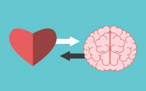 Heart and brain interaction