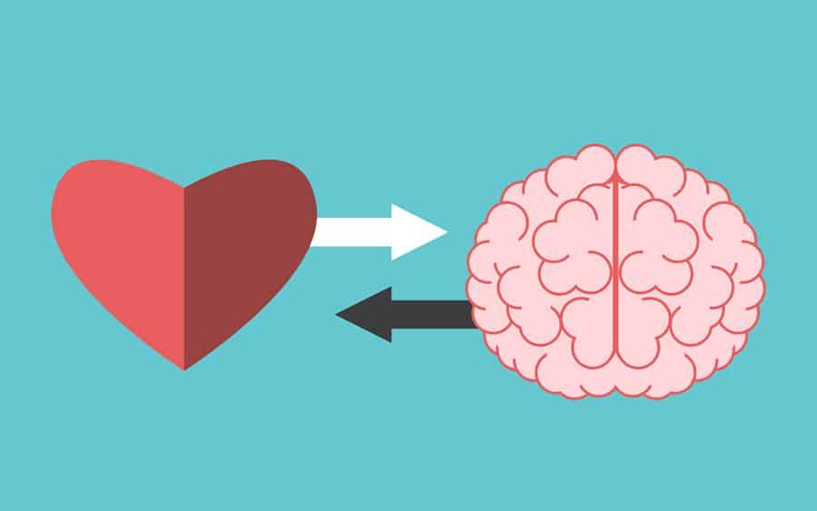 Dissertation heart and brain interrelation